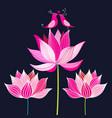lovers pink birds vector image