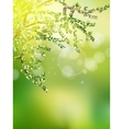 Beautiful Nature Bokeh EPS 10 vector image