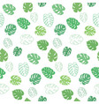 botanical of monstera leaf vector image vector image