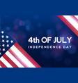 creative invitation flyer decorated american vector image vector image