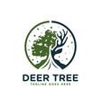 deer wood forest logo vector image vector image