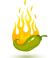 green chili fire shadow vector image vector image