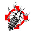 hand drawn louse on crosshatch vector image vector image