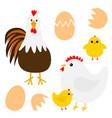 hen rooster cock chicken broken cracked egg bird vector image