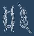 nautical knots marine loop and navy rope sketch vector image