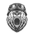 vintage logo style bear vector image vector image
