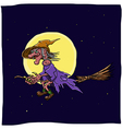 witch on a broomstick vector image vector image