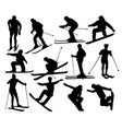 skier standing on the snow silhouetees vector image