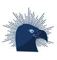eagle bird icon vector image