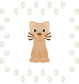 Cartoon kitty cat in frame of animal footprints vector image vector image