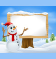 christmas snowman and winter sign vector image vector image