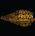 french word cloud concept vector image