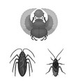 isolated object of insect and beetle symbol set vector image