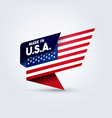 made in usa flag pin vector image