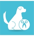 veterinary clinic concept gromming vector image vector image