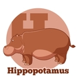 ABC Cartoon Hippopotamus vector image