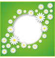 Abstract background with flower camomile vector image vector image