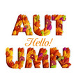 hello autumn typography design made with leaves vector image