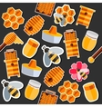 Honey flat collage vector image