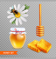 honey realistic set on transparent background vector image