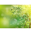 Nature background with green fresh leaves EPS 10 vector image vector image