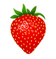 raw strawberry 3d stile vector image vector image