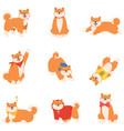 set funny red cheerful japanese akita dogs vector image vector image