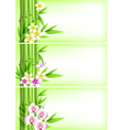 Banners with green bamboo vector image