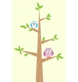 two owls on the tree vector image