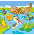 Inhabitants Of Pond And Marshes vector image