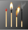 3d realistic match stick icon set closeup vector image vector image