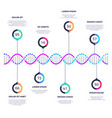 abstract dna molecule business infographic vector image