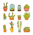 Beautiful set of hand drawn houseplants vector image vector image