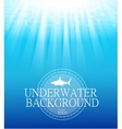 Blurred underwater background with sunbeams vector image