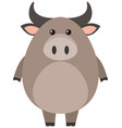 buffalo with round body vector image vector image