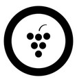 grape icon black color in circle vector image