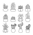 line style cactus and succulents set vector image vector image