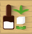 stevia natural sweetener leaves and spoon vector image vector image