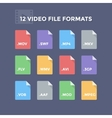 Video File Formats vector image vector image