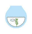 fishs in aquarium icon vector image