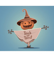 Halloween of decorative scarecrow with head vector image