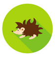 hedgehog circle icon vector image