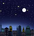 Night city light vector image vector image