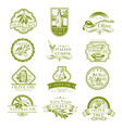 olive oil and italian cuisine olives icons vector image vector image