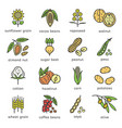 agricultural commodities plant origin icons vector image