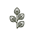 Plant leaves natural environment ecology line and