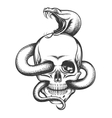 Snake and Skull Engraving