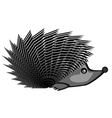 A funny hedgehog vector image