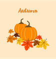 autumn composition with pumpkins vector image vector image
