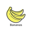 bananas thin line icon isolated fruit linear vector image vector image
